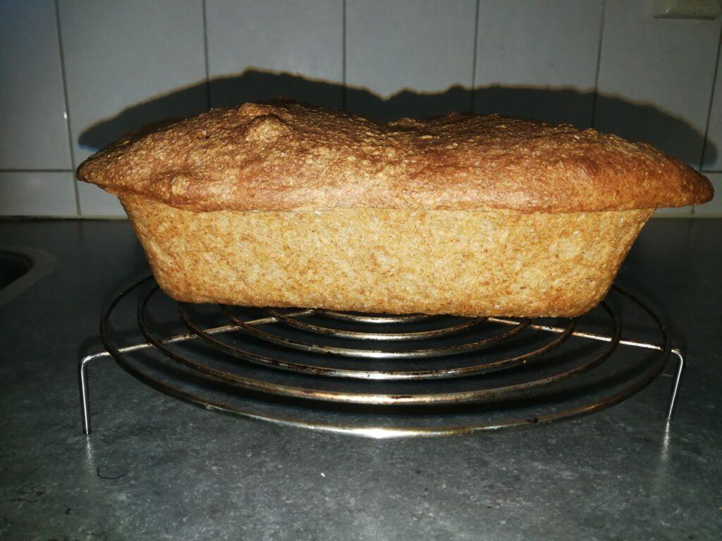 Brood zakt in tijdens het bakken - Foto: Aad Van de Steenoven