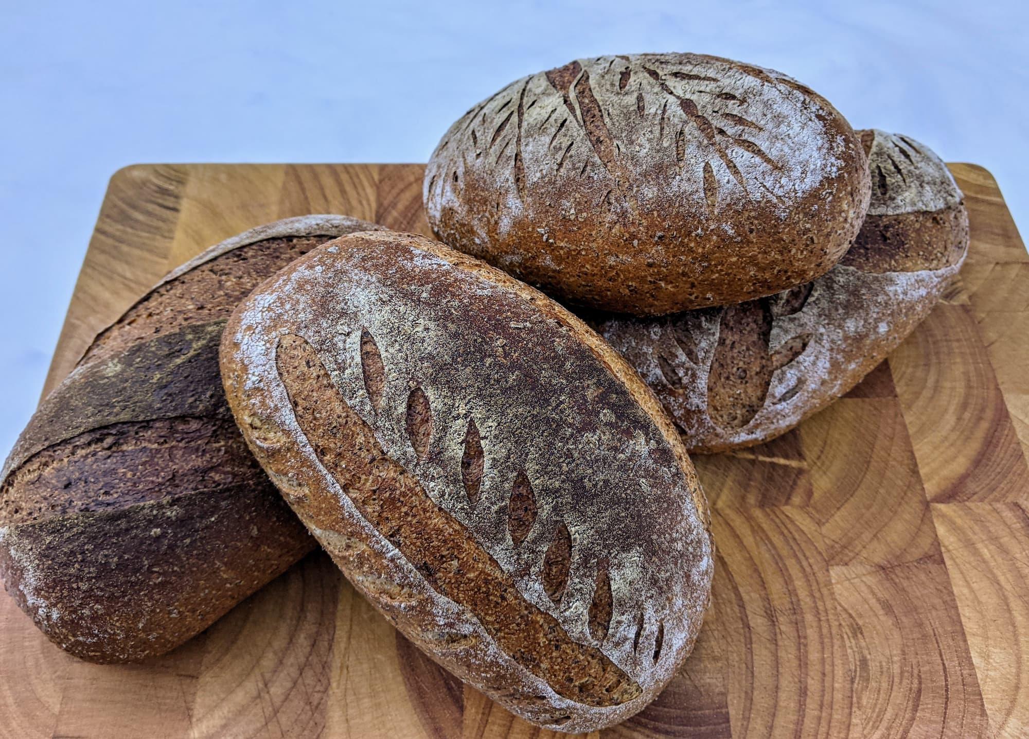Bruine lunchbroodjes met Slaege Rode Wintertarwe